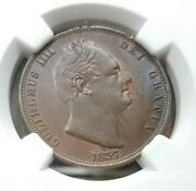 1837 King William Iv Great Britain 1/2 Penny Ngc Ms 63 Bn Half Penny Toned Coin