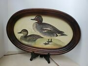 Two Ducks Teal Vintage Etching Tassotti Italy Oval Framed Lithograph Art Print