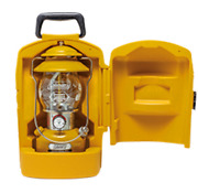 Coleman Season Lantern Carry Case 2020 Mustard Color Limited Edition From Japan