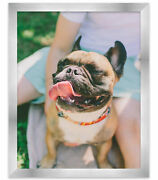 12x24 Silver Stainless Steel Wood Picture Frame - With Acrylic Front And Foam Bo