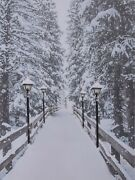 Led Light Up Canvas Pictures 40cm X 30cm Wall Hanging Snow Path And Lanterns