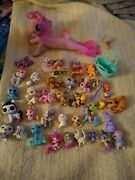 40 Littlest Pet Shop And Other Animals My Little Pony Mermaid