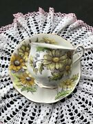 Vintage Bone China Royal Albert Flower Of The Month Daisy 4 Cup And Saucer