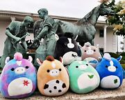 Set Of 6 Kentucky Derby Squishmallows Rare 2021 Fast Ship In Hand Htf 🐎