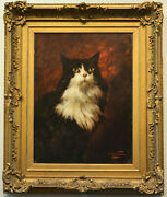A Wonderful Cat Painting By Carl Kahler Circa 1890 Signed And Framed
