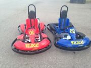 15 Hp. Wild Cat Go Kart , Gas Powered With Electric Start. By Kartworld