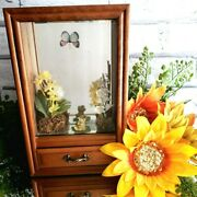 Vintage Butterfly Frog Spring Music Jewelry Box Sunshine Of My Life See Video