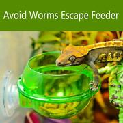 Worms For Reptiles Worm Live Fodder Container For Pet Lizard Chameleon