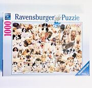 New Sealed Dogs Days Of Summer Ravensburger Puppies Cute 1000pc Jigsaw Puzzle