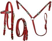 D.a. Brand Deluxe Poly Bridle And Breast Collar W/braided Rawhide Trim Horse Tack