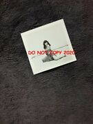 Bunny Yeager Vtg 50s Bettie Page Pinup Girl Photo On Beach 1950 Leopard Wrap