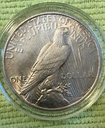 1924 P Peace Dollar Silver. Nice In Capsule. Free Shipping.