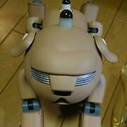 Rare Sony Aibo Ers―31l Entertainment Robot Dog Limited Model Pug Japanese Ver.