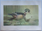"""Ned Smith Pirouette"""" Wood Duck Limited Edition Art Print 1983 Signed 596/4975"""