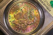 1884 O Morgan Silver Dollar Pcgs Ms 63 Ogh Cac Monster Toned