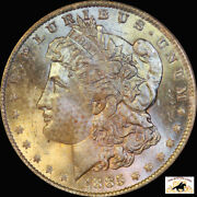 1885 O Morgan Silver Dollar Pcgs Ms 64 Textile Toned Old Blue Holder