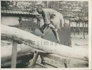 1925 Japanese Woodcutter Slices Tree Trunk Tokyo Press Photo
