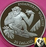 1994 Gambia 20 Dalasis Chimpanzee Wildlife Conservation Wwf Silver Proof Coin