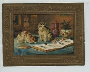 Victorian Trade Card New Year White And Brown Cats Looking At Trade Card Album