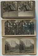 14 Yosemite Park California Stereoview Cards 3 Candids Variety Of Makers