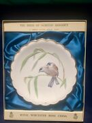 Royal Worcester The Birds Of Dorothy Doughty Plate Blue Winged Sivas  In Box