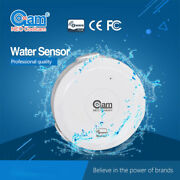 Neo Z-wave Alarm Sensor Home Automation System Water Sensor With Probe