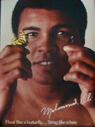 Muhammad Ali Float Like A Butterfly Vintage 1978 Poster 20x28 Rare Nm Not Repro