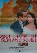 Raintree County Japanese B2 Movie Poster A Elizabeth Taylor Montgomery Clift R68
