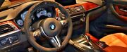 Bmw Oem F30 F31 F34 F36 3 And 4 Series Red Sycamore Wood Interior Trim Individual