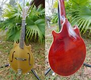 Bulldog/kratzer 2 Point Gold Top Mandolin With Case, Warranty And Free Shipping