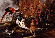 Jan Fyt Peacock In Landscape With Roosters Turkeys Ducks Heron And Parrot Repro