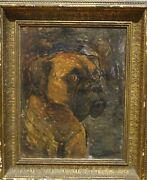 Circa 1900 English School Portrait Of A Brown Boxer Dog Signed Antique Painting