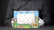 Nintendo 3ds Xl Animal Crossing Console Pal Boxed - And039the Masked Manand039