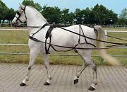 Tack Set For Windsock Leather Harness Full