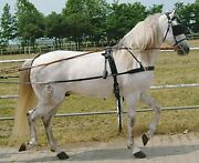 Tack Set For Windsock Leather Harness