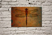 Dragonfly On Distressed Background With Color Burn Filter - Canvas Print 16x24