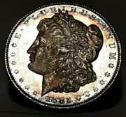 1882 P Toned Dmpl Morgan Silver Dollar Awesome High Grade Coin Great Mirrors