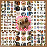 100 Precut Dogs And Puppies Bottle Cap Tray Charm Images Variety 1 Inch Circles