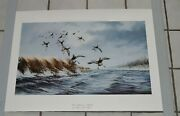 1987 Large David Maass Bluebill Ducks Print Late Migration Wild Wings