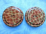 6608 Andndash 2 Matching Xl Animal Print Tight Top Celluloid Antique Buttons 1-15/16andrdquo