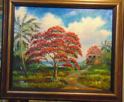 Royal Poinciana Tree Original Oil Painting 20x 24 Genuine Mazz And Highwaymen Card