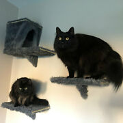 Furry Padded And Strong Cat Wall Shelves For Big Cats Like Maine Coons