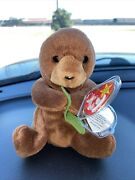 Ty Beanie Baby 1996 Seaweed Style 4080 Tag Errors Rare P.v.c. Mint Condition