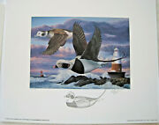 1996 Conn Duck Stamp Print By Keith Mueller W/pencil Remarque - Old Squaw Decoy