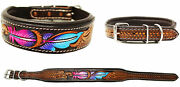 Padded Leather Dog Collar Hand Tooled 60hr10