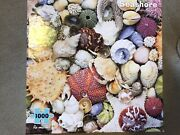 Seashore 1000pc Jigsaw Puzzle By Re-marks With Poster Euc