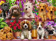Puppies Galore Jigsaw Puzzle 1000 Piece