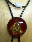 Vintage Glass Bridle Rosette Bolo Or Pin Or Tie Bay Horse With Red Background
