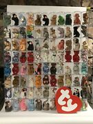 88 Cased Beanie Babies W/ Tags And Store Display Sign - Instant Collection