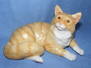 John Beswick Connoisseur Collection Cat Maine Coon Red Shaded Tabby Jbcoc4